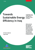 Towards sustainable energy efficiency in Iraq